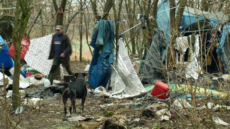 OLOMOUC TJECKIEN, JANUARI 2, 2019: För för gettotält och hund för ark hemlös lya för byggnad för chalet för folie för trä plast- arkivfoto