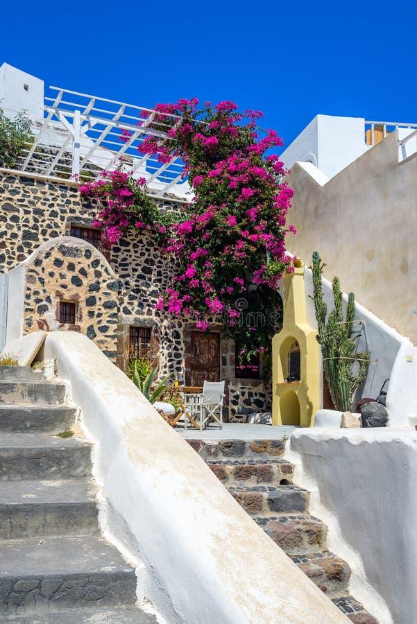 Olorful在圣托里尼使有美丽的花的后院和经典传统建筑学平静 图库摄影