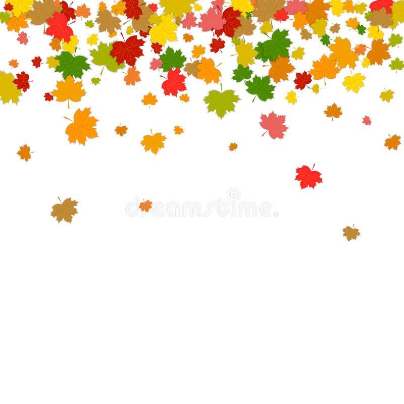 Olorful dalende Bladeren Ð ¡ Esdoornbladeren op witte backgro worden geïsoleerd die royalty-vrije illustratie