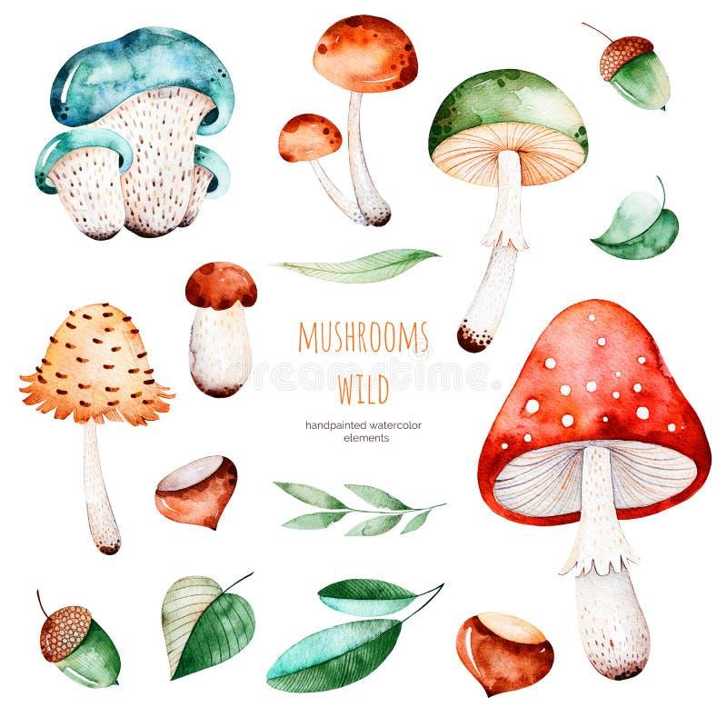 Olorful höstsamling med 15 vattenfärgbeståndsdelar stock illustrationer