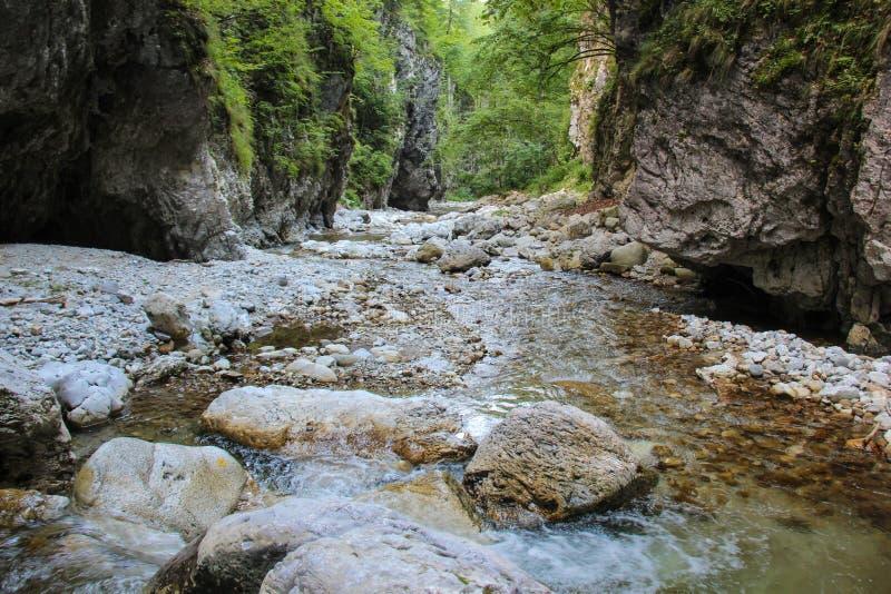 Oltet gorge le canyon image libre de droits