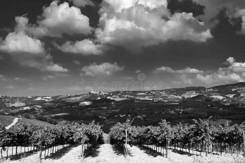Oltrepo Pavese Италия, сельский ландшафт на лете стоковое фото