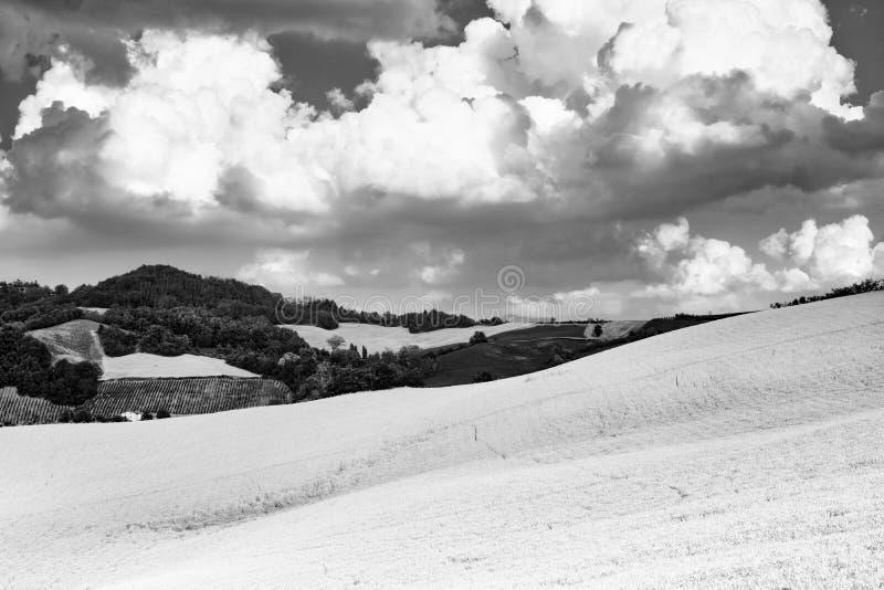 Oltrepo Pavese Italien, lantligt landskap på sommar royaltyfri fotografi