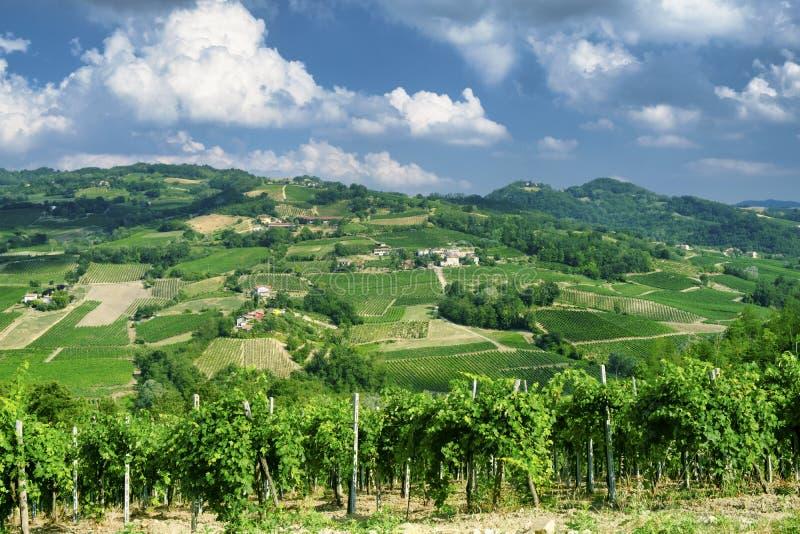 Oltrepo Pavese Italien, lantligt landskap på sommar royaltyfri foto