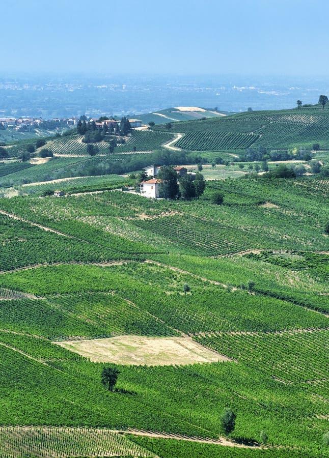 Oltrepo Pavese Italien, lantligt landskap på sommar arkivbilder