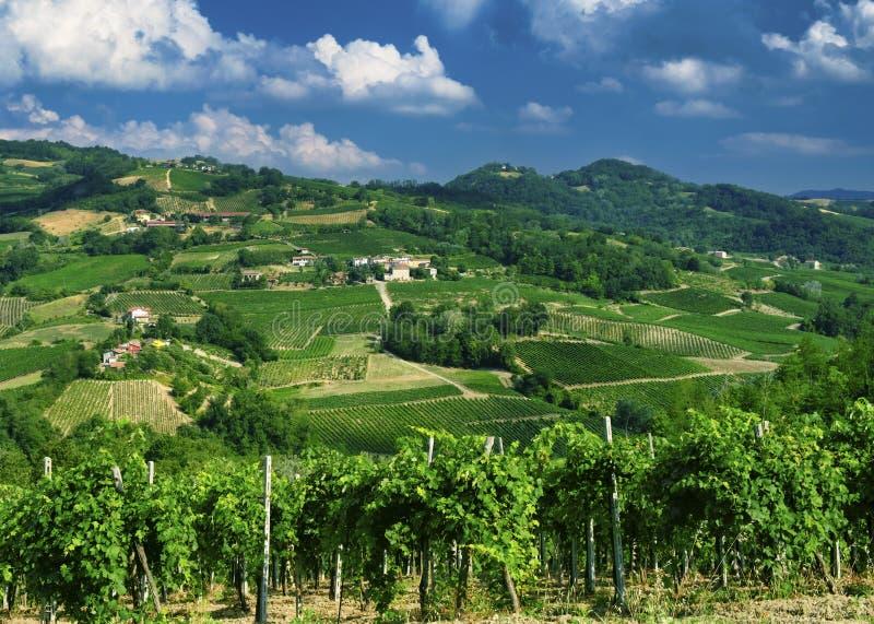 Oltrepo Pavese Italien, lantligt landskap på sommar arkivfoton