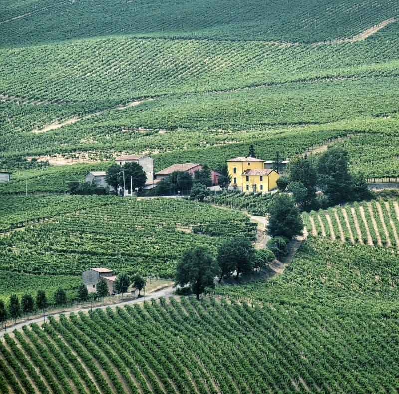 Oltrepo Piacentino Italien, lantligt landskap på sommar arkivbild