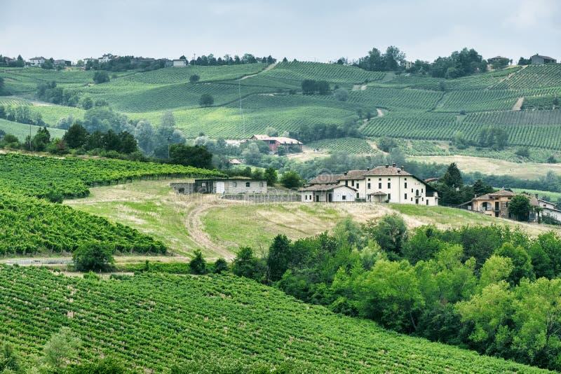 Oltrepo Piacentino Italien, lantligt landskap på sommar royaltyfria bilder
