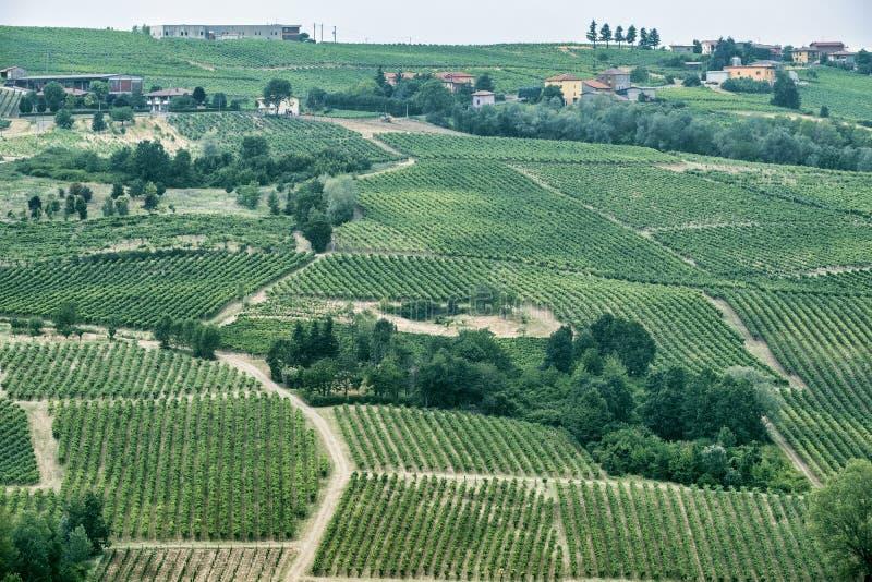 Oltrepo Piacentino Italien, lantligt landskap på sommar arkivbilder