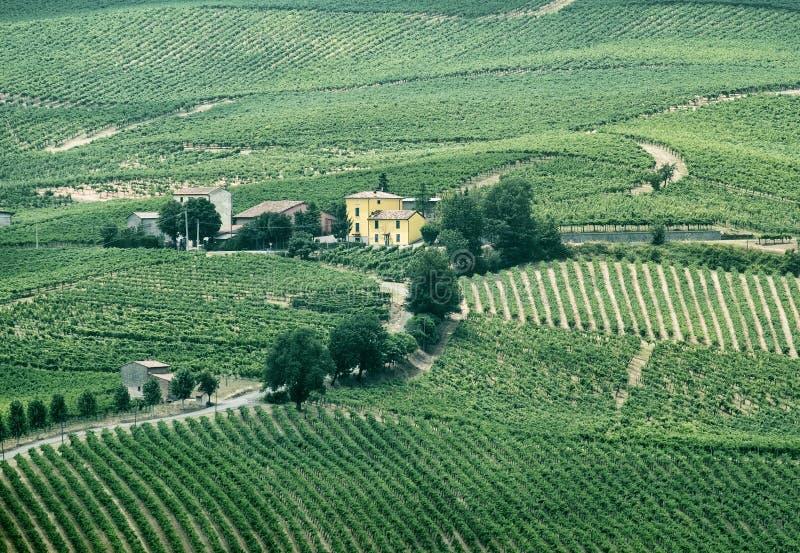 Oltrepo Piacentino Italien, lantligt landskap på sommar royaltyfria foton