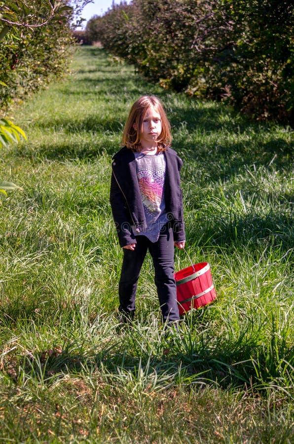 Olycklig flicka i äpplefruktträdgård arkivfoto