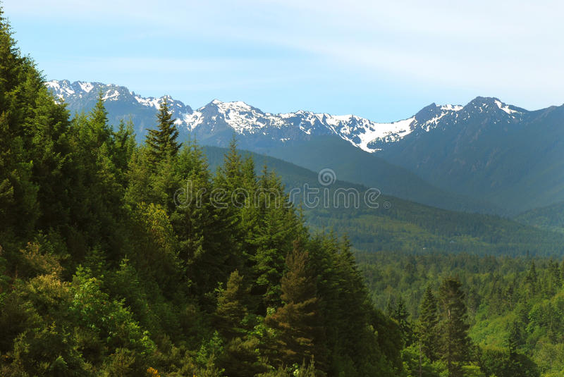 Olympic National Park Mountains. A view of the mountains of Olympic National Park stock photography