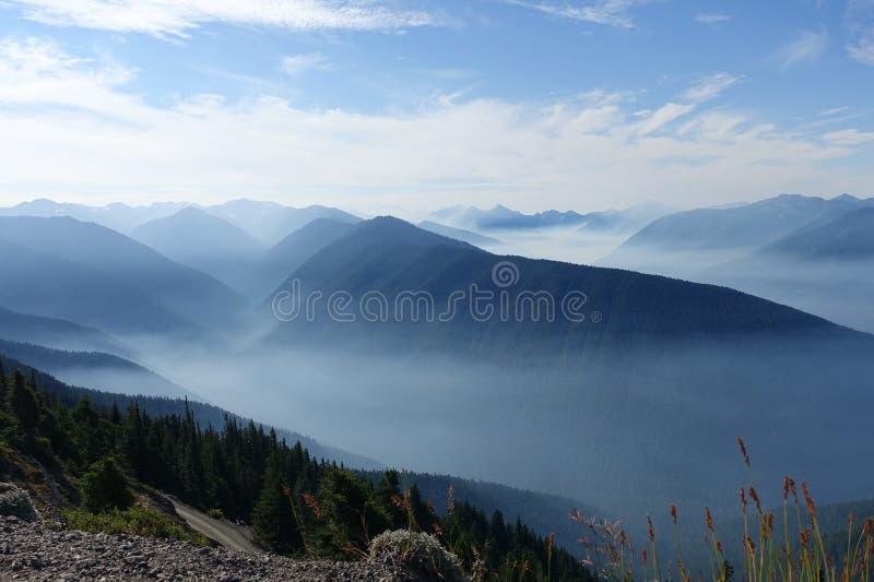 Olympic National Park, Washington royalty free stock images