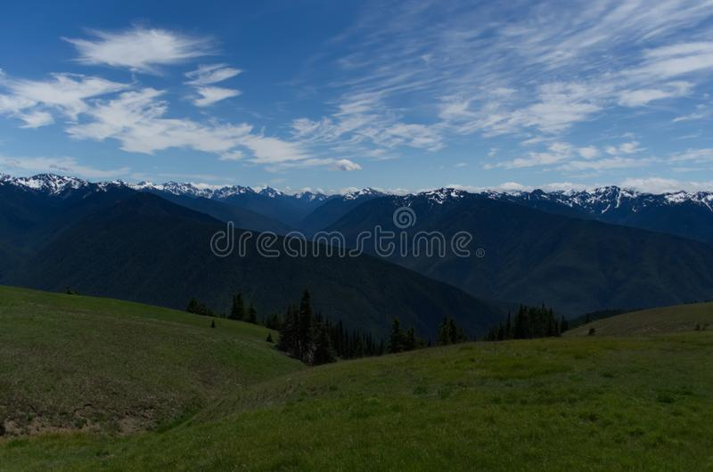 Olympic National Park, Washington State. Hurricane Ridge, Olympic National Park, Washington State.  Snow capped mountains.  Blue sky royalty free stock photography