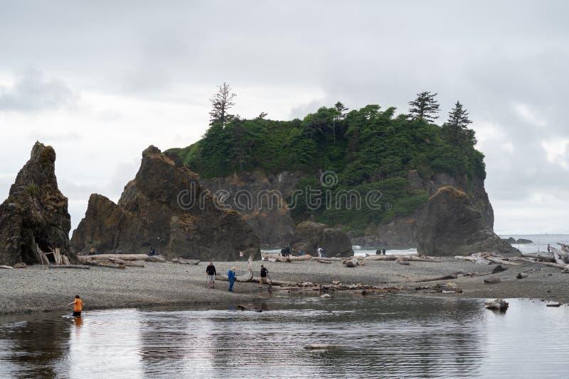 Olympisch Nationaal Park, Washington - Juli 7, 2019: De toeristen genieten van stoeiend rond op dichtbij seastacks van Ruby Beach stock foto