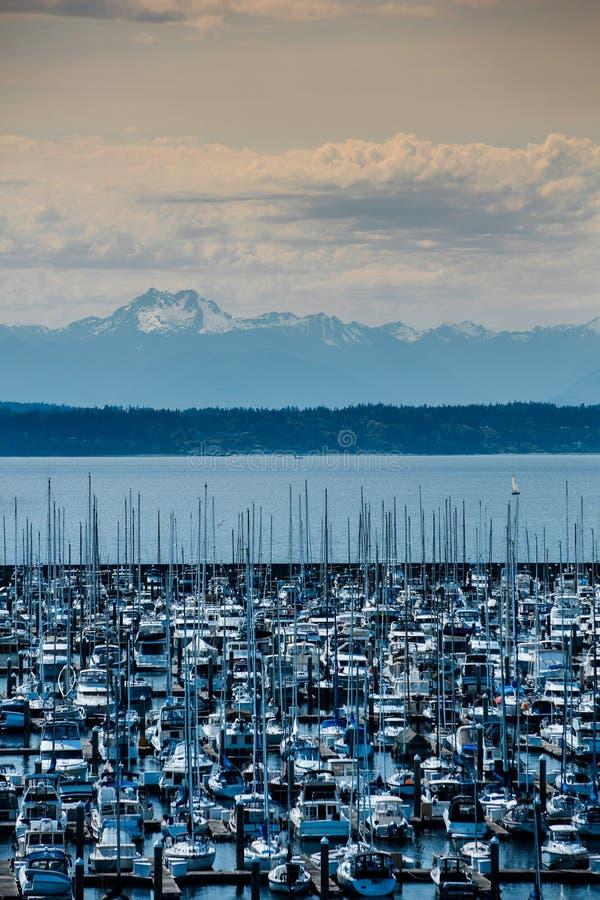 Olympisk bergskedja från den Seattle kusten royaltyfria foton