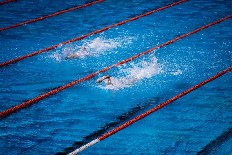 Olympisk simbassäng med simmarekrypandeloppet royaltyfri fotografi