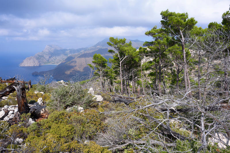Olympos stock photography