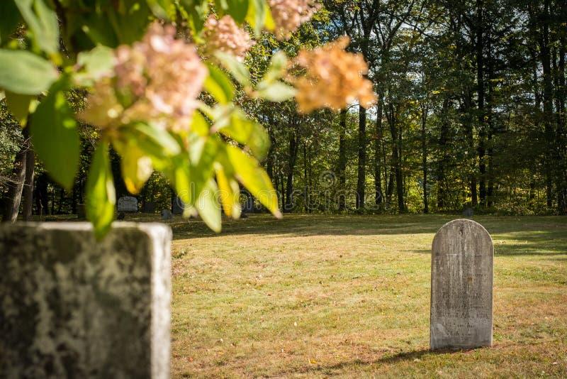 Omärkta gravstenar i en solig kyrkogård arkivfoton