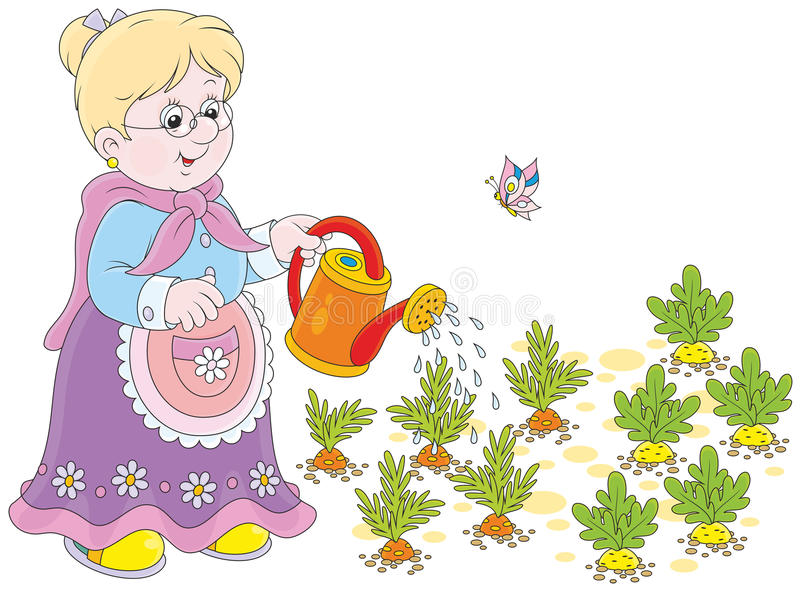 Oma het water geven groenten stock illustratie