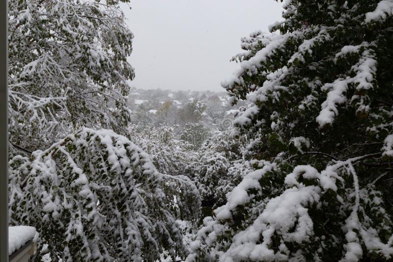 Neighborhood under siege: First snow of 2018 winter season in Omaha Nebraska USA. An Omaha neighborhood photo taken through an upper level window under siege stock photo