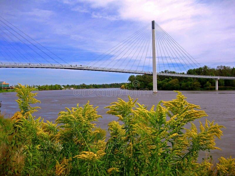 Omaha upphängningbro royaltyfria bilder