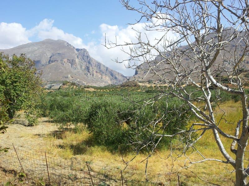 Omalos platå, Kreta, Grekland Nära Samaria Gorge royaltyfria foton