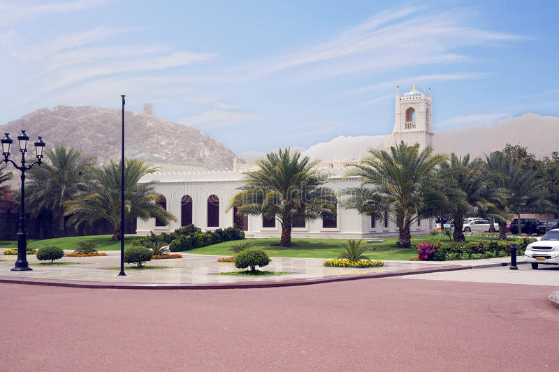 Oman muszkat obrazy royalty free