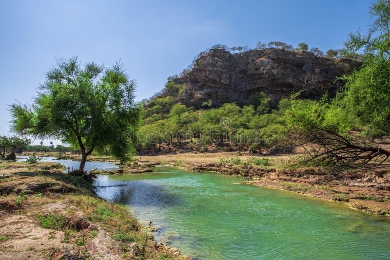 Oman och Wadi Darbat, bergsikt royaltyfria bilder
