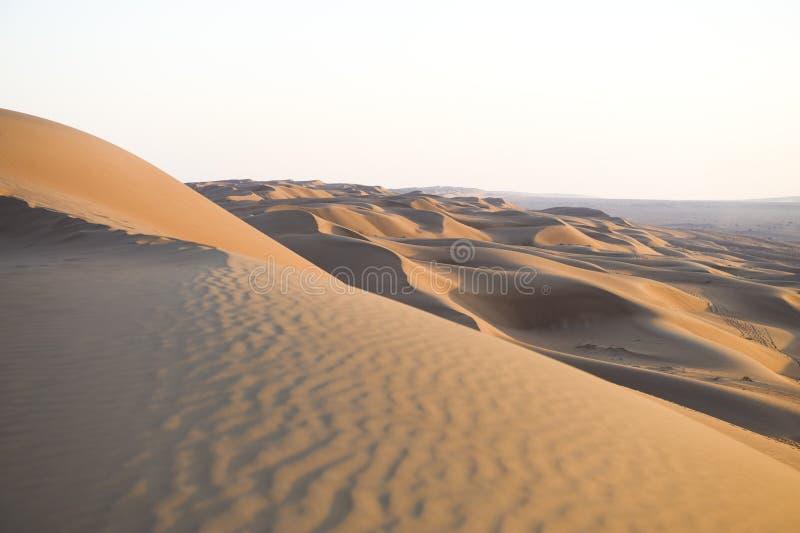 oman pustynny wahiba obrazy royalty free