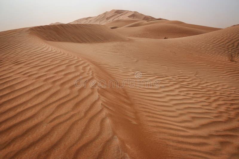Oman: Töm fjärdedelen arkivfoton