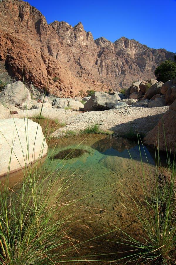 Oman: Tempting pool in Wadi Tiwi royalty free stock image