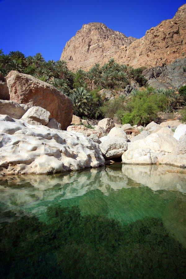 Oman: Tempting pool in Wadi Tiwi royalty free stock photo