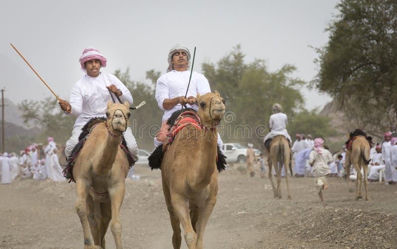 Download Omani Mensen Die Kamelen Berijden Op Een Stoffige Plattelandsweg Redactionele Foto - Afbeelding bestaande uit dier, kameel: 114225281