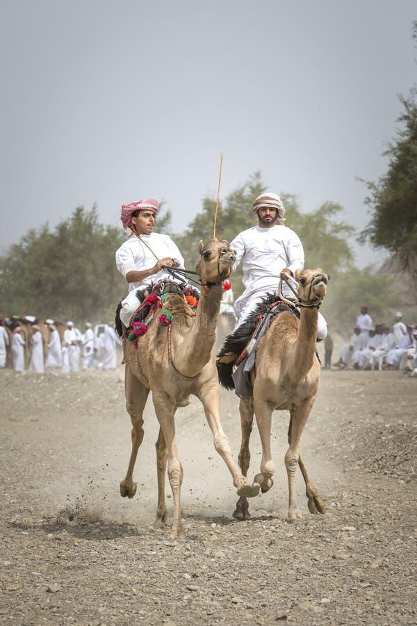 Download Omani Mensen Die Kamelen Berijden Op Een Stoffige Plattelandsweg Redactionele Stock Foto - Afbeelding bestaande uit kameel, arabier: 114225313