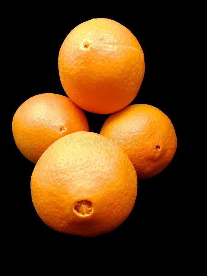 Ombligos de naranjas frescas fotos de archivo libres de regalías