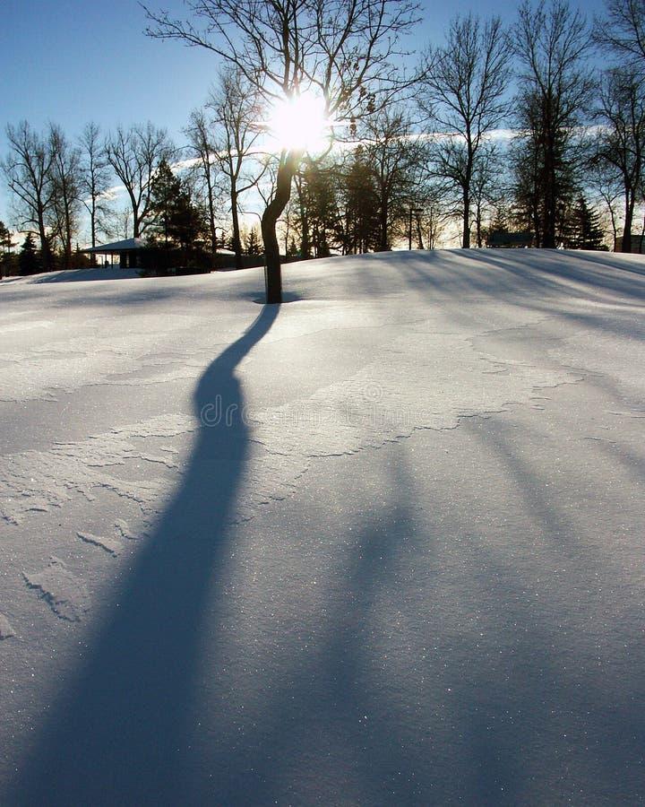 Ombra della neve fotografie stock libere da diritti