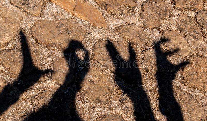 ombra delle mani immagini stock