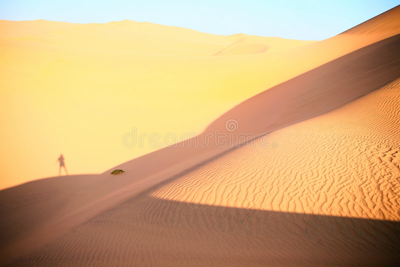 Ombra di un uomo che rimane sulla duna immagini stock libere da diritti