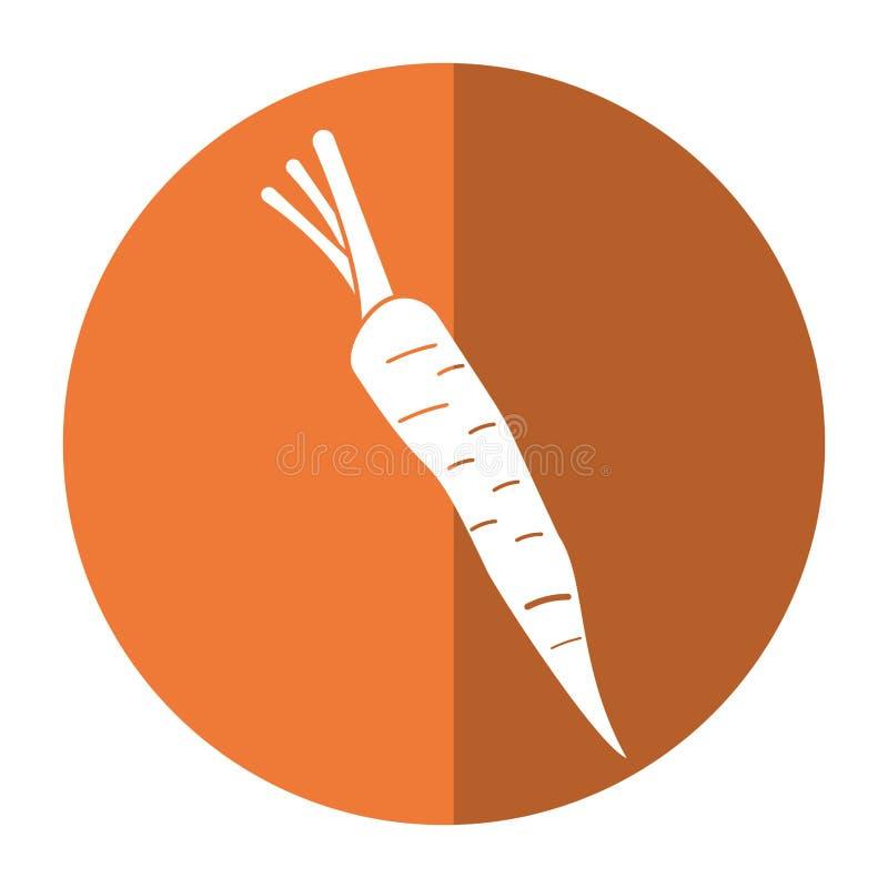 Ombra di verdure di nutrizione della carota illustrazione vettoriale