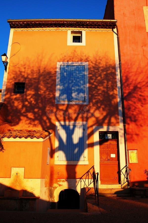 Ombra I dell'albero fotografia stock libera da diritti