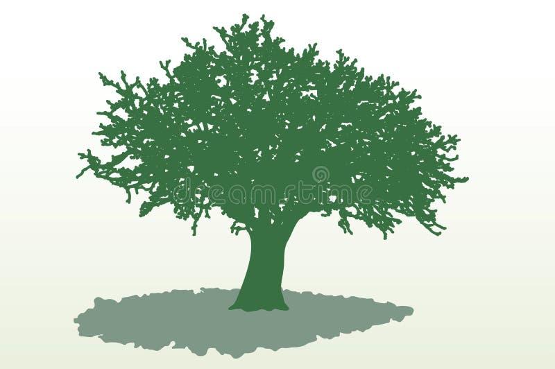 Ombra larga dell'albero royalty illustrazione gratis