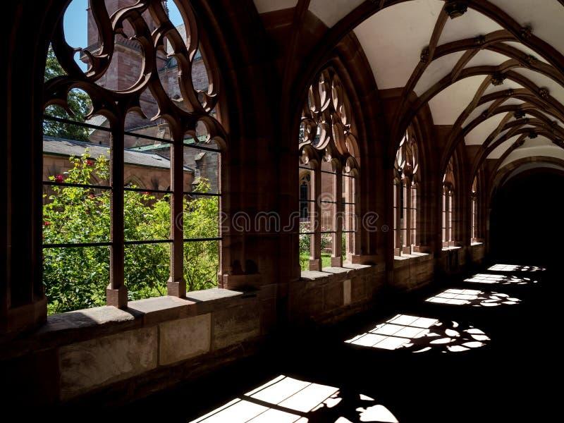 Ombre a Basilea Minster, luce solare attraverso le finestre gotiche fotografie stock