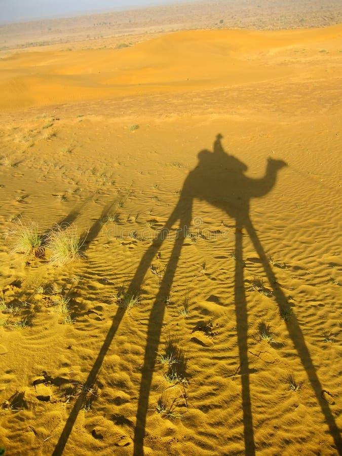 Ombre d'un chameau avec le touriste sur des dunes de sable, désert de Thar, Ind photos libres de droits