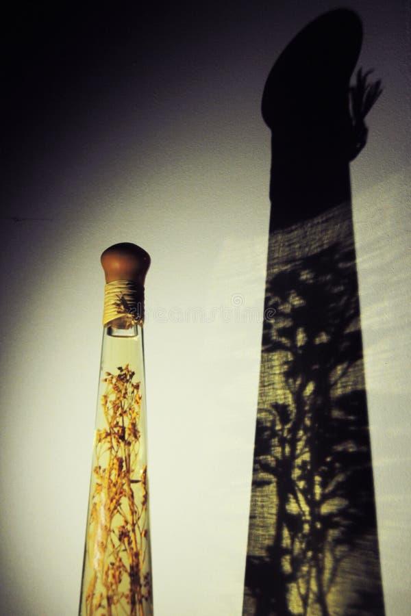 Ombre d'une bouteille en verre reflowed sur le mur photos libres de droits