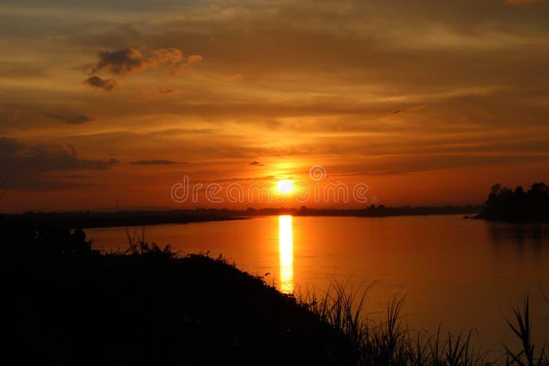 Ombre de l'arbre au coucher du soleil le soir photos stock