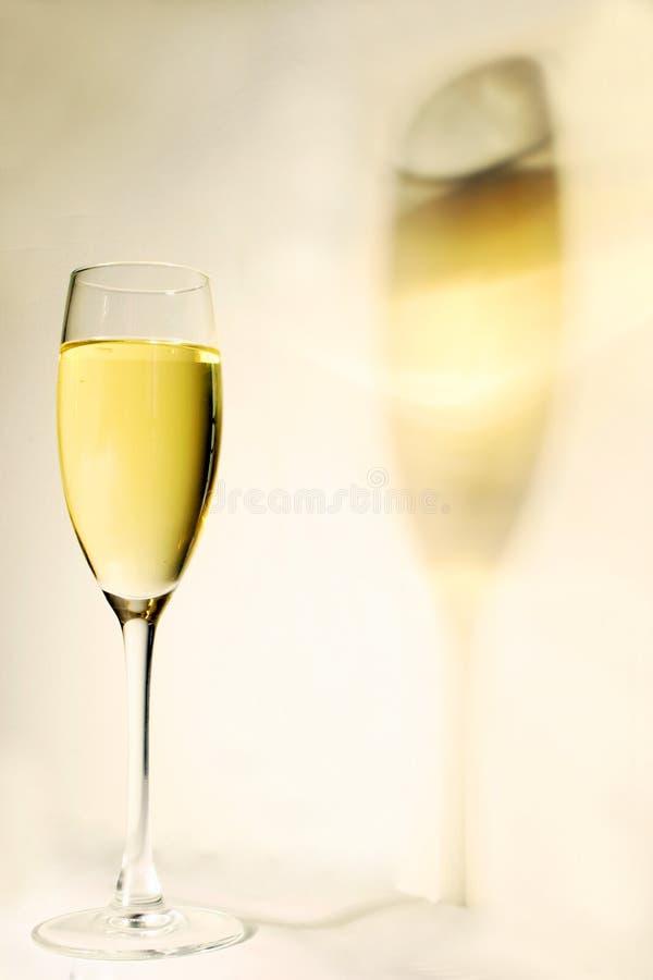 Ombre de vin photographie stock libre de droits