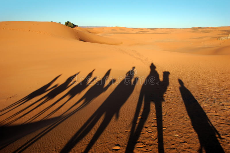Ombre del caravan del cammello fotografia stock libera da diritti