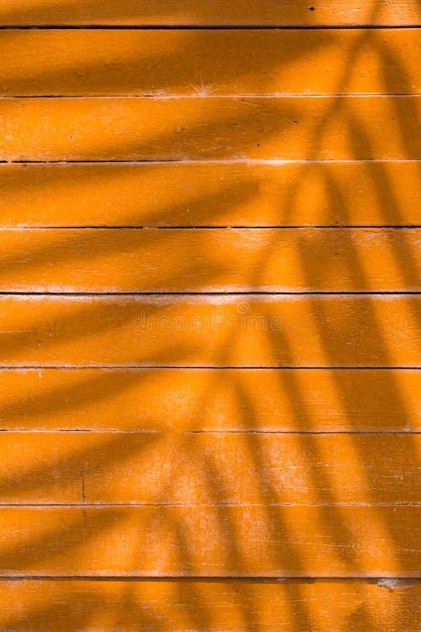 Ombre delle foglie sull'assicella gialla immagine stock