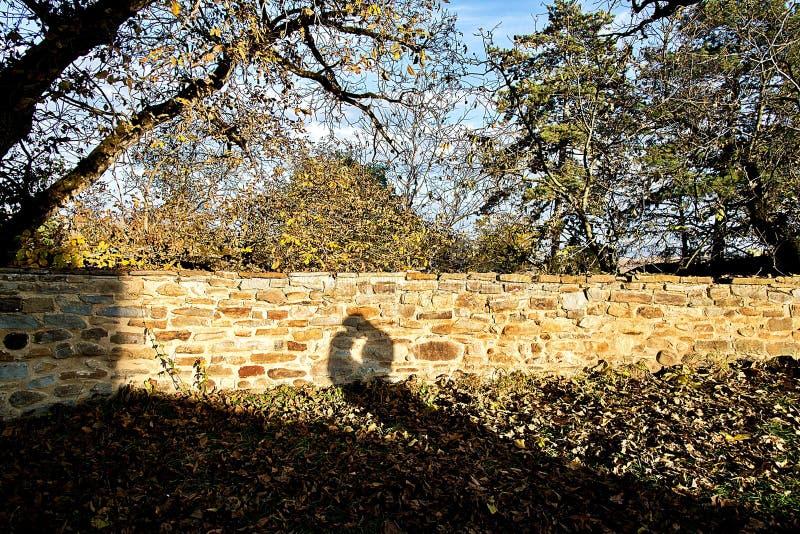 Ombre des couples affectueux sur un mur de briques photo libre de droits